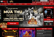 ca-cuoc-the-thao-12bet